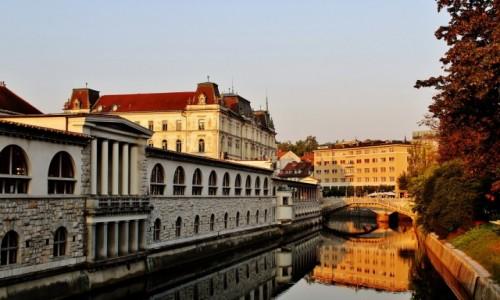Zdjecie SłOWENIA / Primorje / Lublana / Nad Lublanicą