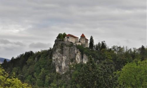 SłOWENIA / Góry / Bled / Bled, zamek
