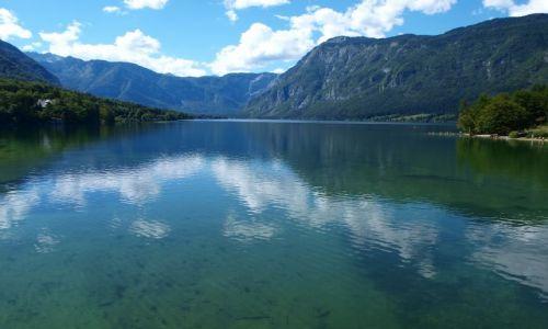 Zdjecie SłOWENIA / Alpy Julijskie / Jezioro Bohinskie / Jezioro Bohinskie