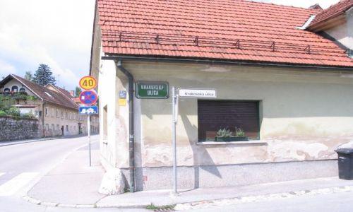 Zdjecie SłOWENIA / Lublana / Slowenia  / Lublana. Maly element patriotyczny ;]
