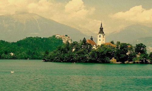 Zdjecie SłOWENIA / Alpy Julijskie, Kranjska Gora / Bled / Jezioro Bled