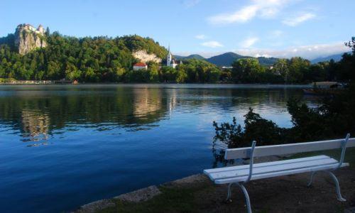 Zdjęcie SłOWENIA / - / BLED / BLED