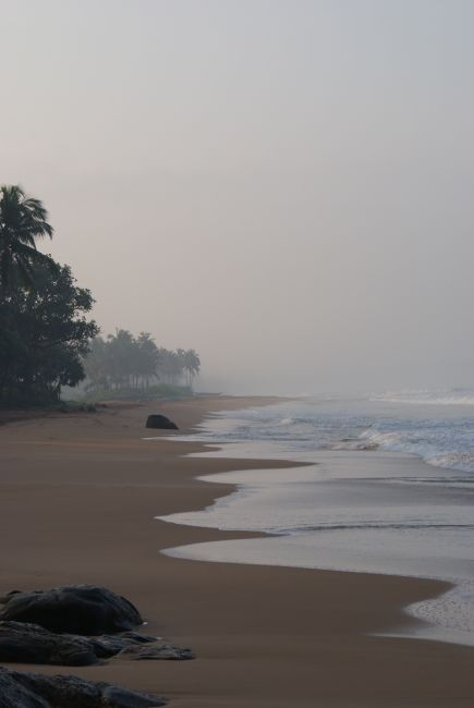 Zdjęcia:  ,  Południe Wyspy, Wilgotność bliska 100%, SRI LANKA