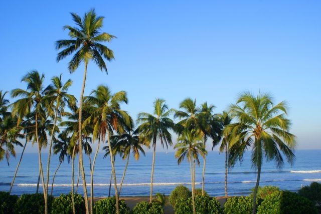 Zdjęcia:  , Południowy zachód wyspy, I love it, SRI LANKA