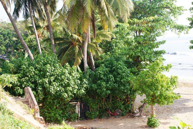 Zdjęcia:  , Południe Wyspy, Powiedz mi gdzie mieszkasz, SRI LANKA