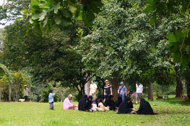 Zdjęcia: Ogród Botaniczny Peredenja w Kandy,  , Rodzinne śniadanie w parku, SRI LANKA