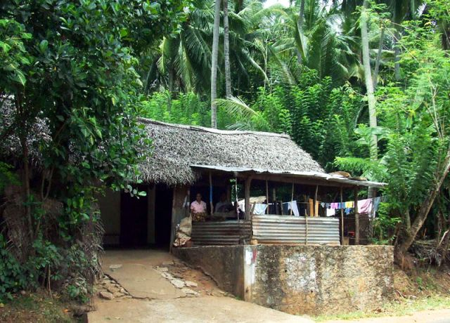 Zdjęcia: kokosowy dom, SRI LANKA