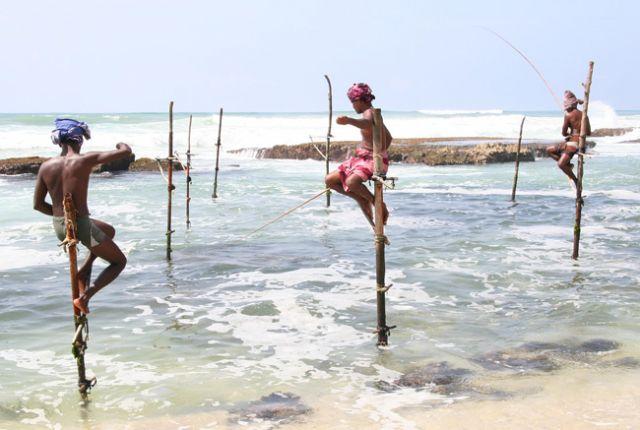 Zdjęcia: Południe Wyspy, Ludzie-Czaple I, SRI LANKA