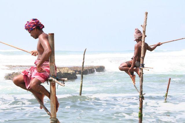 Zdjęcia: Południe Wyspy, Ludzie-Czaple II, SRI LANKA