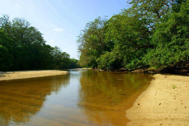 Zdjęcia: Yella, Yella, Rzeka, SRI LANKA