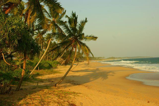 Zdjęcia: Yella, Yella, Plaża, SRI LANKA