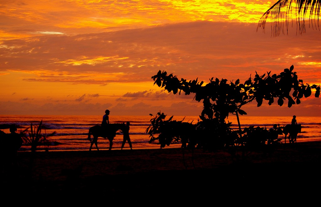 Zdjęcia: Beruwela, Zachodnia część wyspy., O zachodzie słońca, SRI LANKA