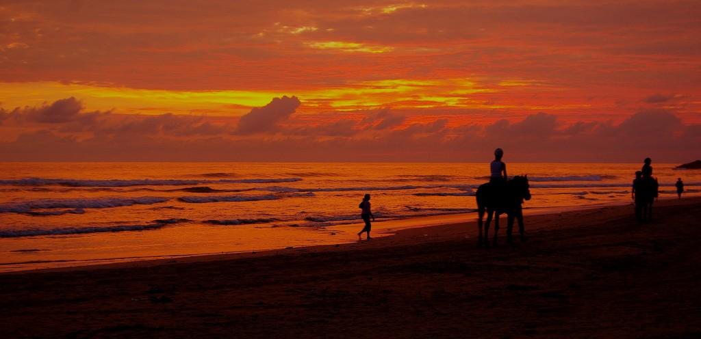 Zdjęcia: Zachodnie wybrzeże, Zachodnie wybrzeże, Sri Lanka, SRI LANKA