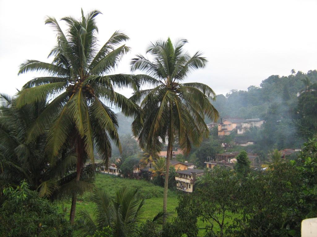 Zdjęcia: sri lanka, Sri Lanka, Sri Lanka, SRI LANKA
