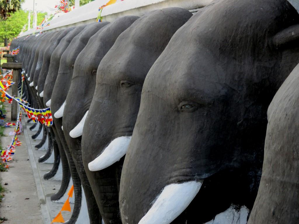 Zdjęcia: Zespół zabytków architektury buddyjskiej, Anuradhapura, Parada słoni, SRI LANKA