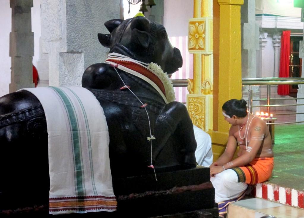 Zdjęcia: Hinduska świątynia w centrum miasta, Kandy, Świętość w czerni, SRI LANKA