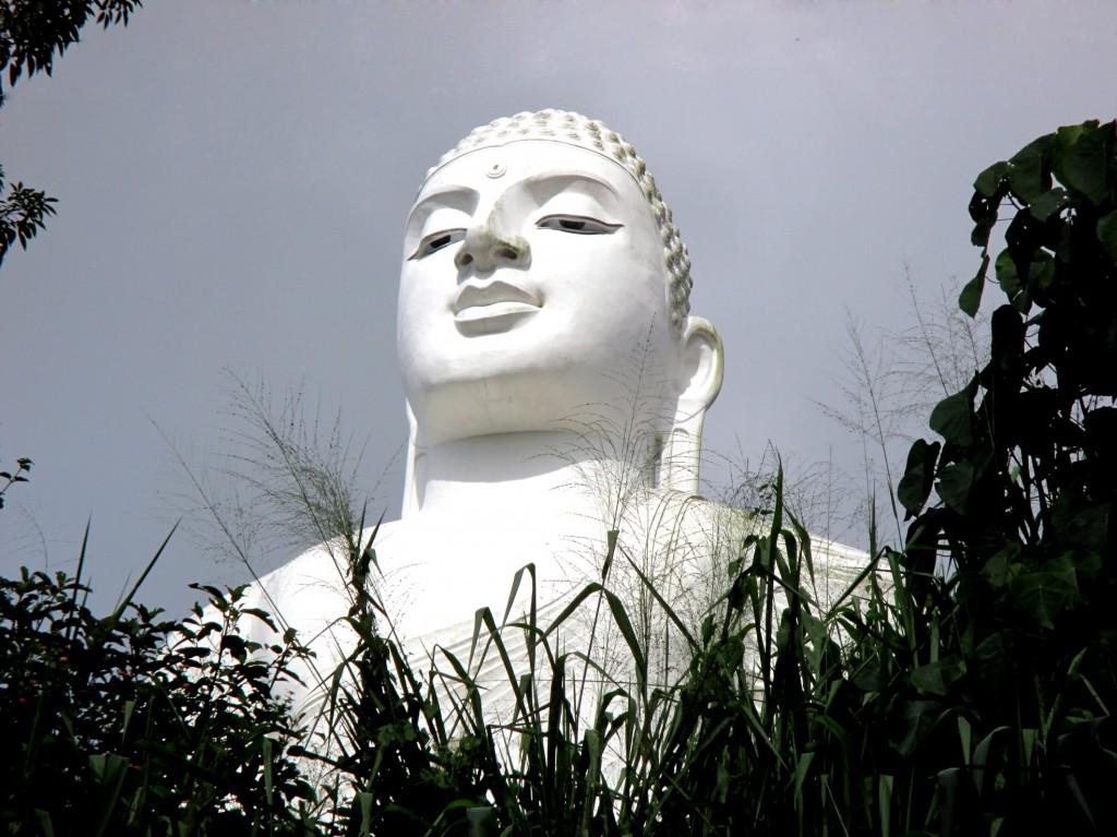 Zdjęcia: Buddyjski klasztor na wzgórzu, Kandy, Zza traw, SRI LANKA