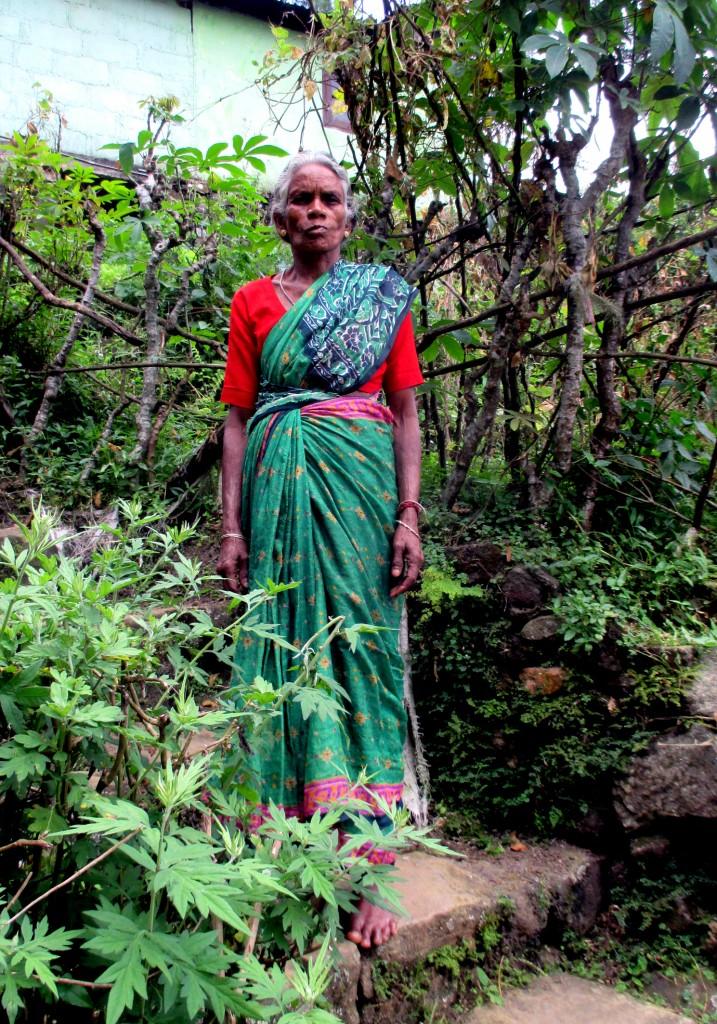 Zdjęcia: Wieś powyżejwodospadu, Okolice Bambarakanda Falls, Duma bez uprzedzenia, SRI LANKA