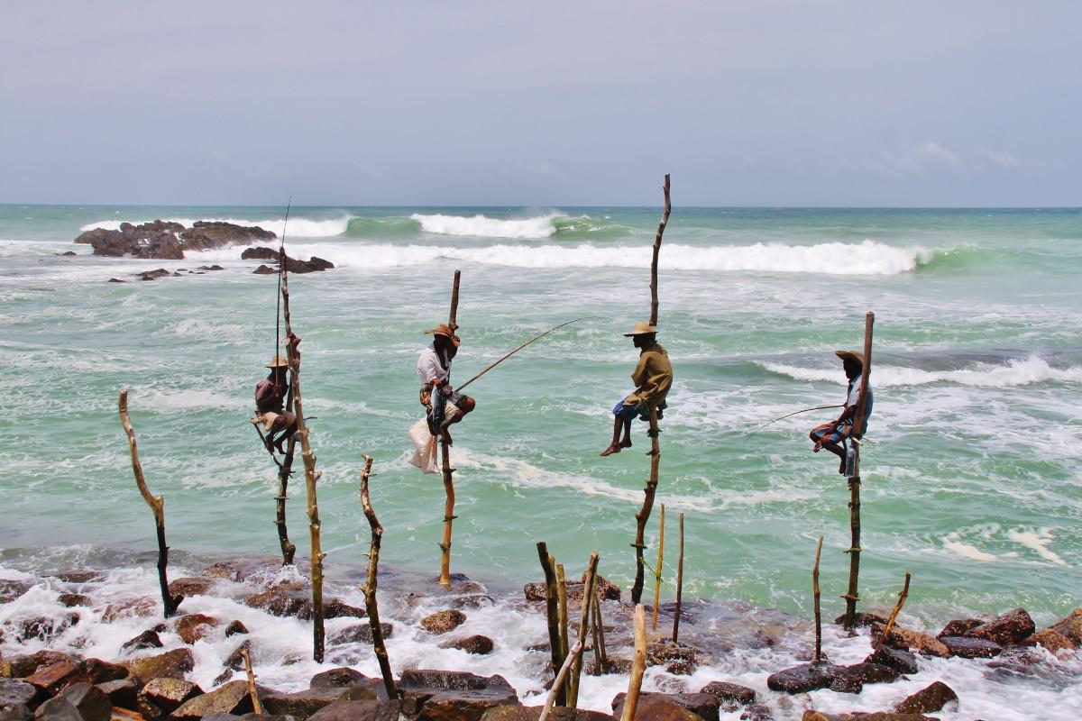 Zdjęcia: okolice Galle, Czekając na rybkę, SRI LANKA