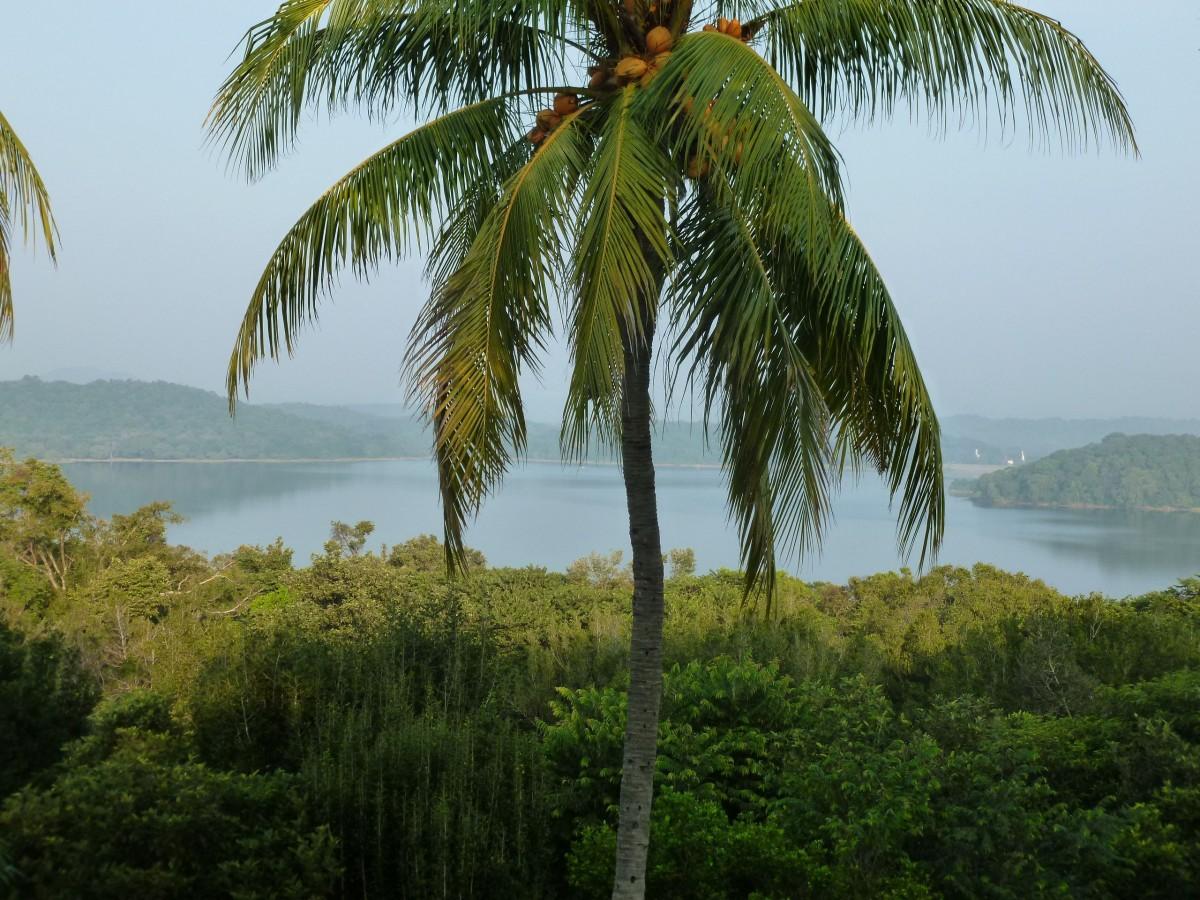 Zdjęcia: Sri Lanka, Colombo, Powietrze lepkie od zapachu, SRI LANKA