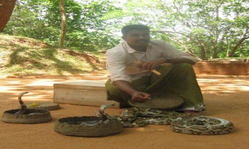 Zdjecie SRI LANKA / Sigiriya / Sigiriya / Zaklinacz_k�br