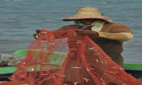 Zdjęcie SRI LANKA / Negombo / Port rybacki / Udany połow