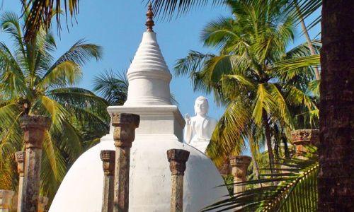 Zdjęcie SRI LANKA / Północna Lanka / Mihintale / W krainie słoni i palm kokosowych cd.