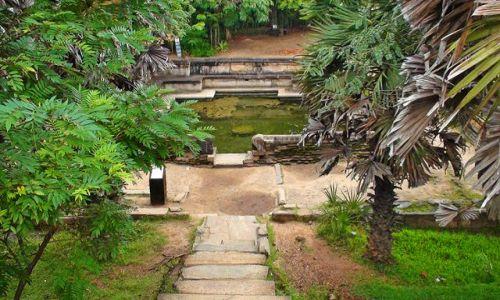 Zdjęcie SRI LANKA / Środkowo-Północna Lanka / Polonnaruwa / W krainie słoni i palm kokosowych cd.