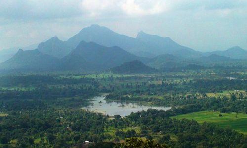 Zdjęcie SRI LANKA / Środkowa Lanka / Sigiriya / W krainie słoni i palm kokosowych cd.
