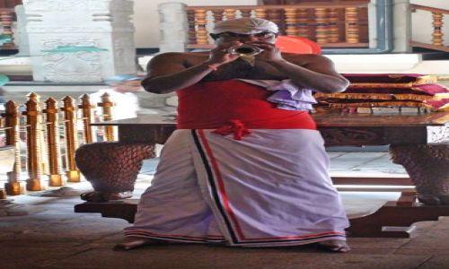 Zdjecie SRI LANKA / Centrala Lanka / Kandy / W krainie słoni i palm kokosowych cd.