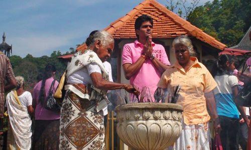 Zdjęcie SRI LANKA / Centrala Lanka / Kandy / W krainie słoni i palm kokosowych cd.