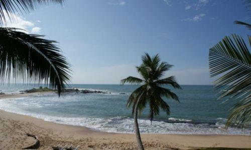 Zdjecie SRI LANKA / - / Sri Lanka / Plaża