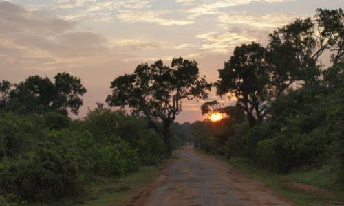 Zdjecie SRI LANKA / - / Sri Lanka / Zachód słońca