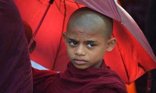 Zdjęcie SRI LANKA / Kandy / Kandy / smutek