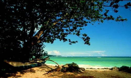 Zdjecie SRI LANKA / Poludnie / Unawatuna / Sri Lanka 51
