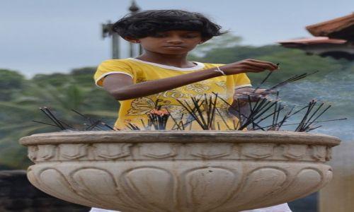 Zdjęcie SRI LANKA / . / Kandy / ...