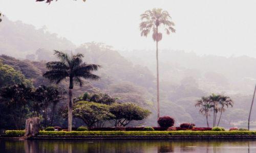 Zdjęcie SRI LANKA / centralny / Kandy / jezioro w Kandy