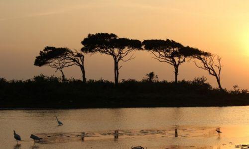 Zdjecie SRI LANKA / Yale Park Narodowy / Yale / nie ma to jak wschód słońca
