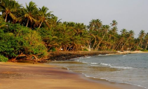 SRI LANKA / południowe wybrzeże / Mirissa / Mirissa