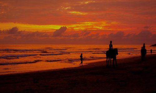 Zdjęcie SRI LANKA / Zachodnie wybrzeże / Zachodnie wybrzeże / Sri Lanka