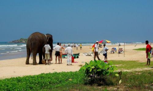 Zdjecie SRI LANKA / Beruwela / Beruwela / Plaża w Beruweli