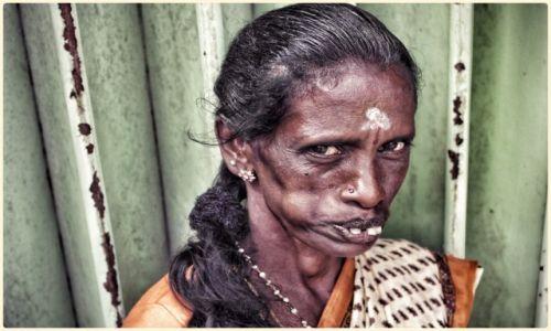 Zdjęcie SRI LANKA / - / haputale / different kind of beauty