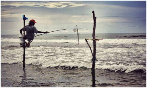 Zdjecie SRI LANKA / Weligama / Weligama / stilt fishermen
