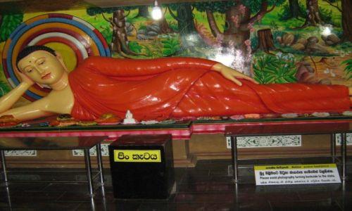 Zdjecie SRI LANKA / Sri Lanka / sri lanka / Budda