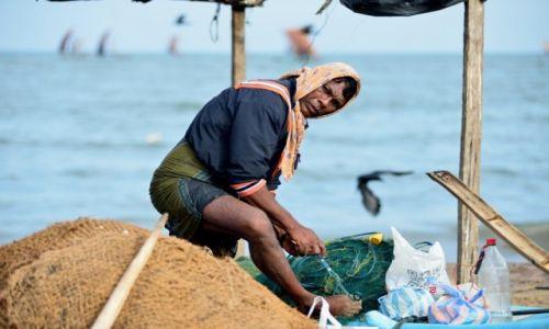 Zdjęcie SRI LANKA / HAMBANTOTA / TANGALLE / Lankijscy rybacy - pilęgnacja sieci po połowie