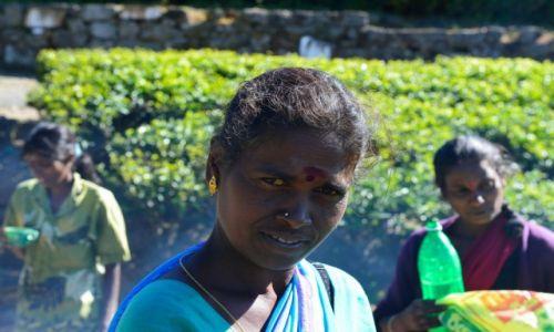 Zdjecie SRI LANKA / Haputale / Lipton Plantation / Kwiaty Sri Lanki