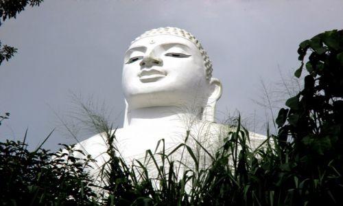 Zdjecie SRI LANKA / Kandy / Buddyjski klasztor na wzgórzu / Zza traw