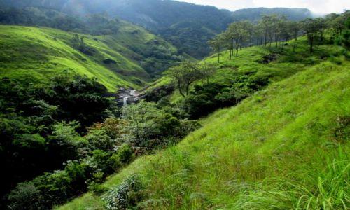 Zdjęcie SRI LANKA / Okolice Bambarakanda Falls / Wodospad Lanka / W odmętach zieleni