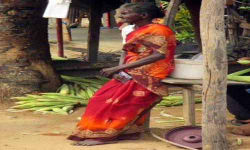 Zdjęcie SRI LANKA / Polonnaruwa / Przystanek autobusowy / W oczekiwaniu