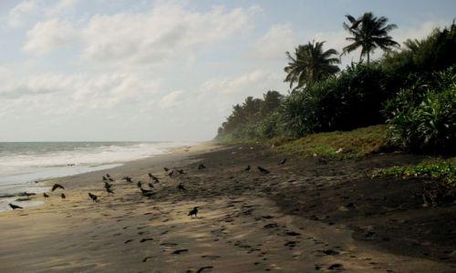 Zdjęcie SRI LANKA / Negombo / Dzikie plaże / Czarna plaża